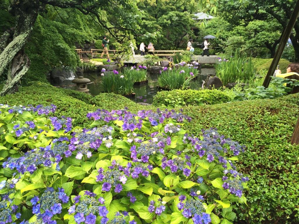 f:id:sho_matsushita:20150624225409j:plain