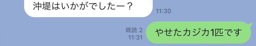 f:id:shobon53:20210321185314j:plain