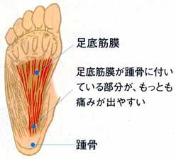 f:id:shoesmaster:20211002191942p:plain