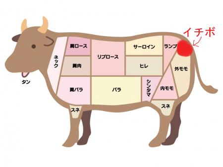 f:id:shohei-yokohama:20180702003748j:plain