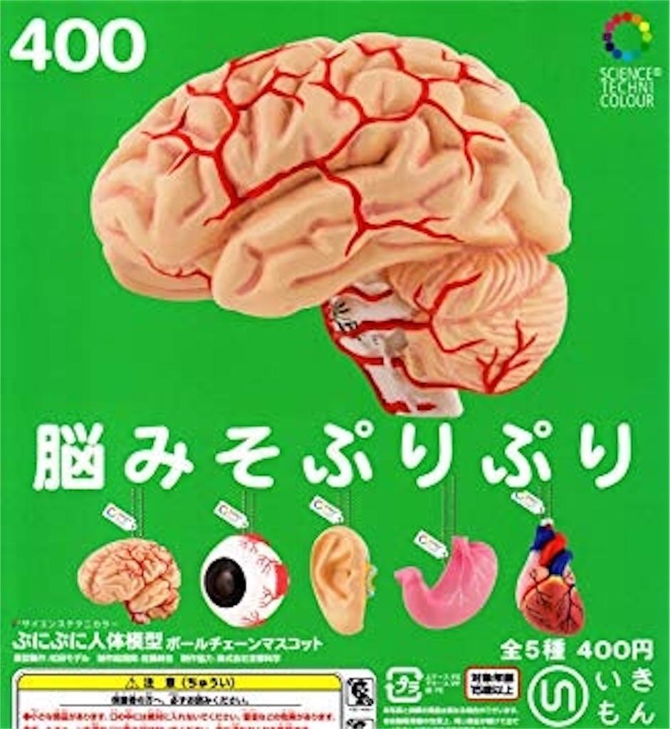 f:id:shohei546151:20180712220700j:image