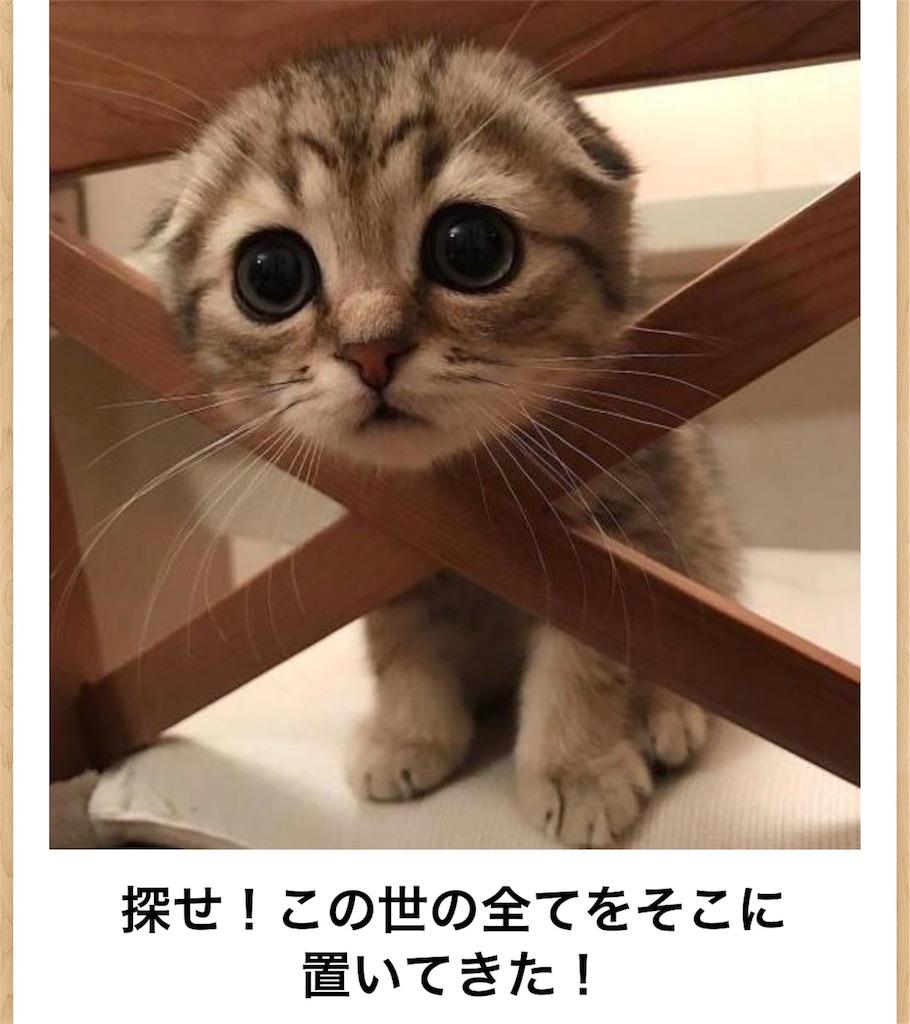 f:id:shohei546151:20180722104727j:image