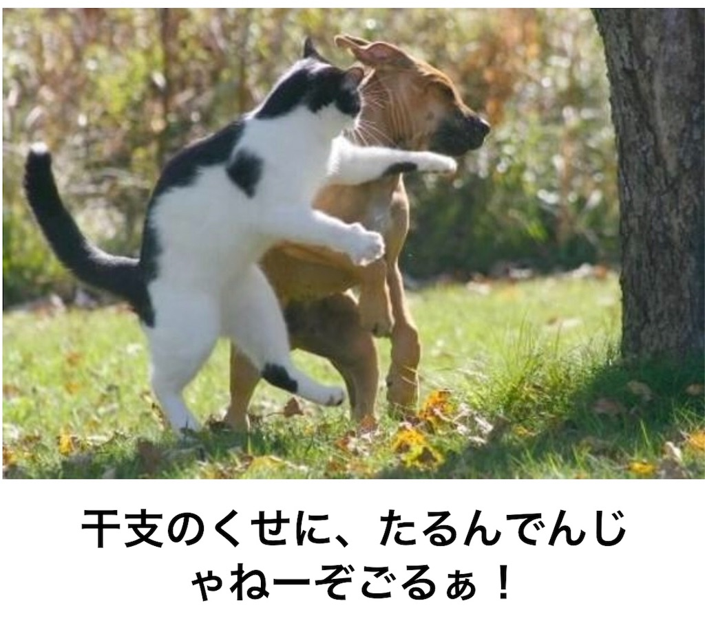 f:id:shohei546151:20180818214233j:image
