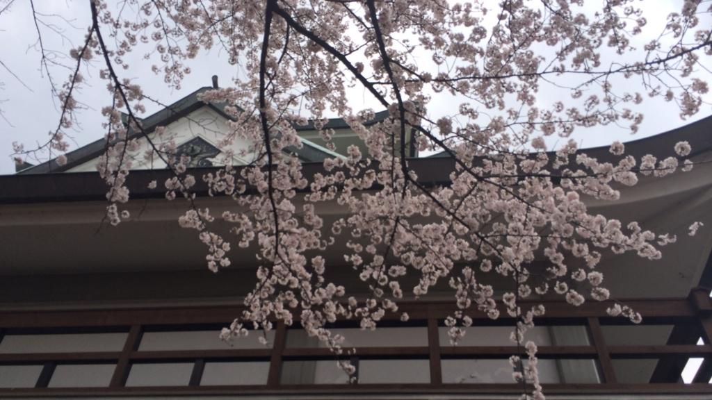 f:id:shohei_info:20160415093057j:plain