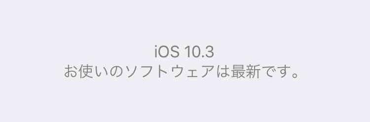 f:id:shohei_info:20170328103221j:plain