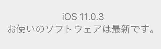 f:id:shohei_info:20171012085029j:plain