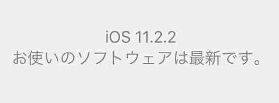 f:id:shohei_info:20180109090634j:plain
