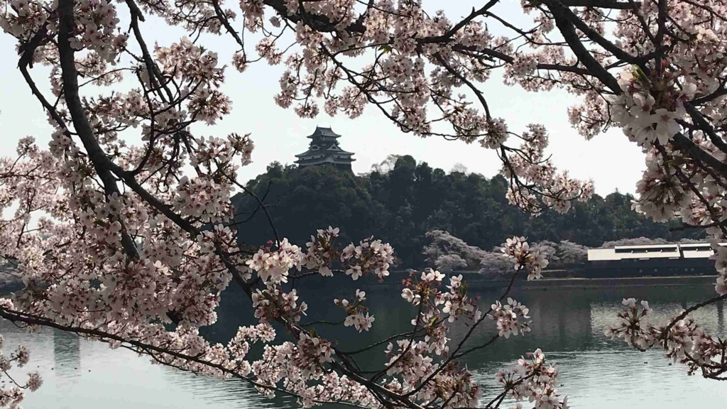 f:id:shohei_info:20180402094749j:plain