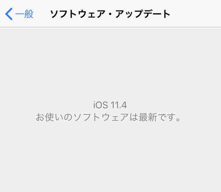 f:id:shohei_info:20180530052340j:plain