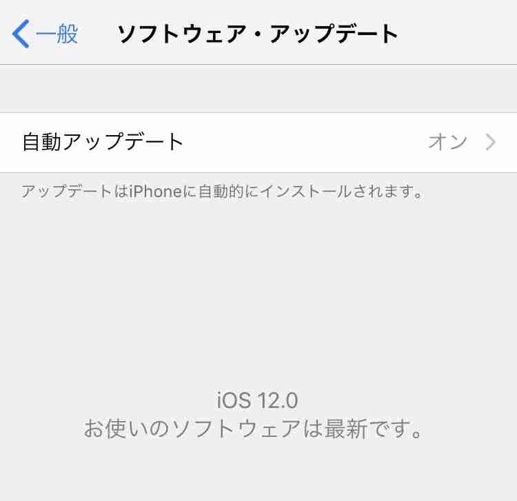 f:id:shohei_info:20180918045850j:plain