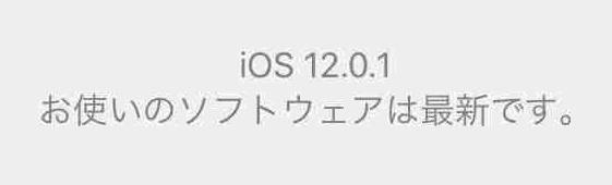 f:id:shohei_info:20181009215204j:plain
