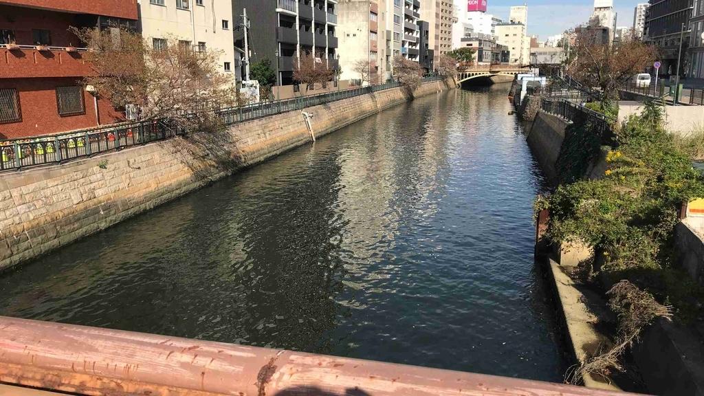 f:id:shohei_info:20181118082559j:plain