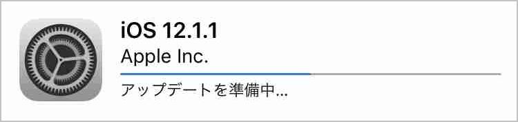 f:id:shohei_info:20181206051958j:plain