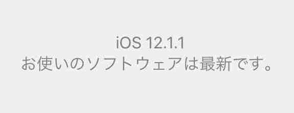 f:id:shohei_info:20181206052155j:plain