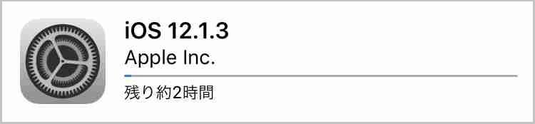 f:id:shohei_info:20190123123331j:plain