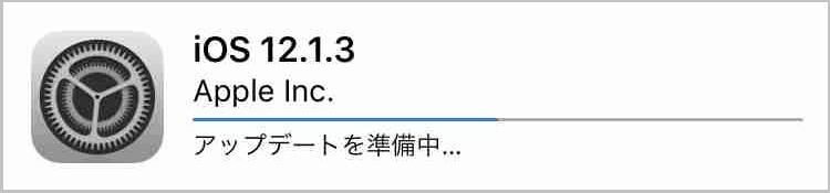f:id:shohei_info:20190123123611j:plain