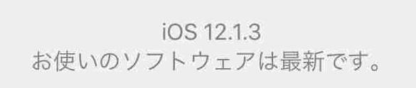 f:id:shohei_info:20190123124021j:plain