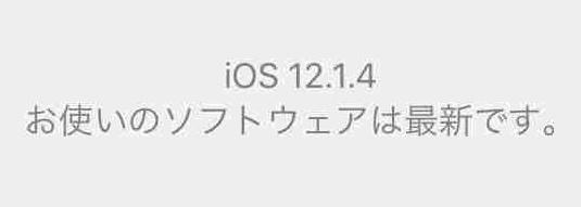 f:id:shohei_info:20190208041922j:plain