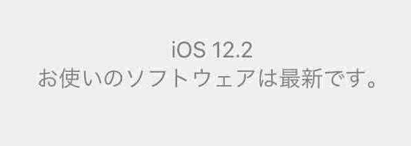 f:id:shohei_info:20190326092818j:plain
