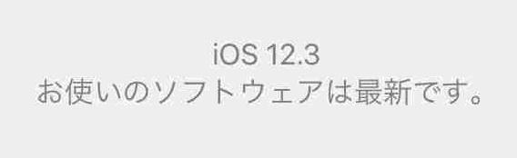 f:id:shohei_info:20190514055534j:plain