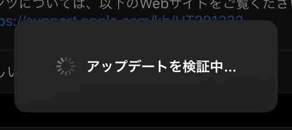 f:id:shohei_info:20191108061248j:plain
