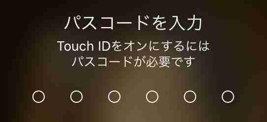 f:id:shohei_info:20191211084826j:plain