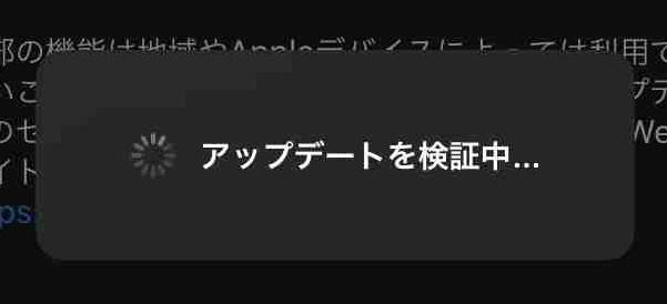 f:id:shohei_info:20200325101154j:plain