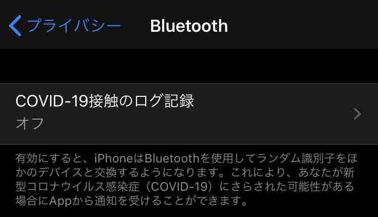 f:id:shohei_info:20200521063846j:plain