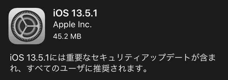 f:id:shohei_info:20200602082751j:plain