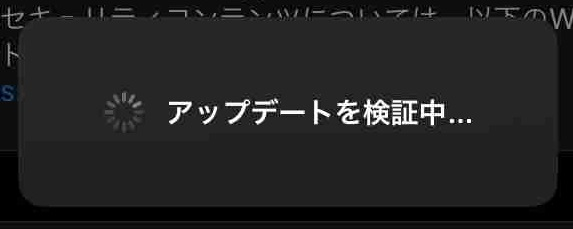 f:id:shohei_info:20200602083939j:plain