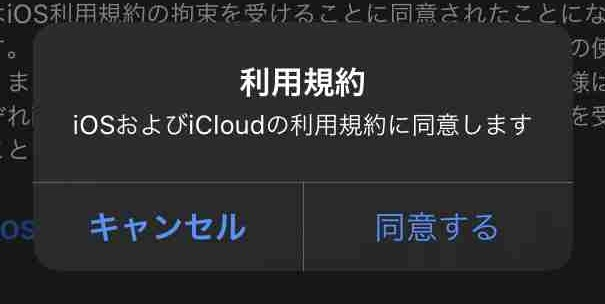 f:id:shohei_info:20200917115617j:plain