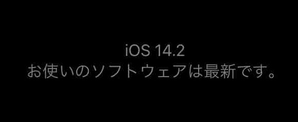 f:id:shohei_info:20201106121529j:plain