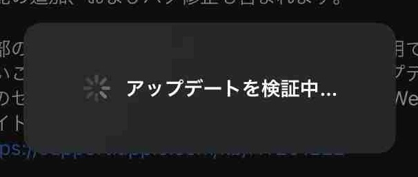 f:id:shohei_info:20201215100042j:plain