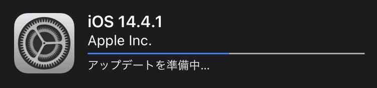f:id:shohei_info:20210309083433j:plain