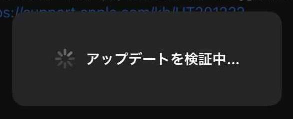 f:id:shohei_info:20210309083525j:plain