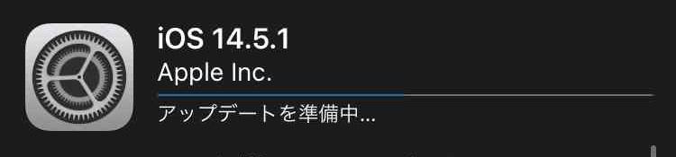 f:id:shohei_info:20210504081300j:plain