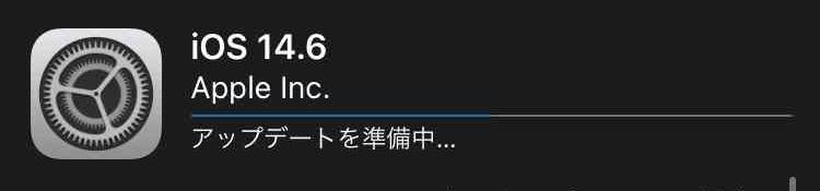 f:id:shohei_info:20210525094657j:plain