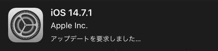f:id:shohei_info:20210727121015j:plain