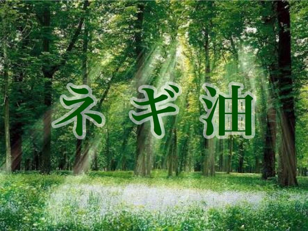f:id:shokaki_2:20170413225908j:image