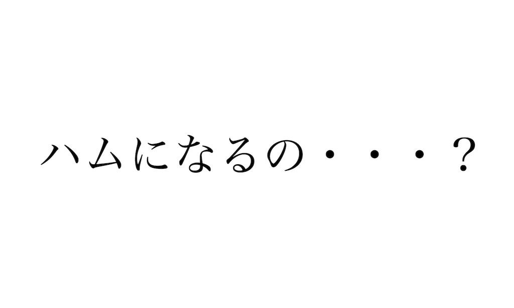 f:id:shokaki_2:20171120182023j:image