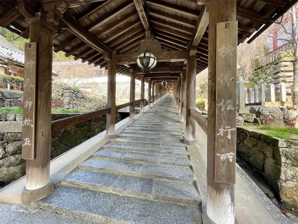 f:id:shokichi48:20210321094203j:image