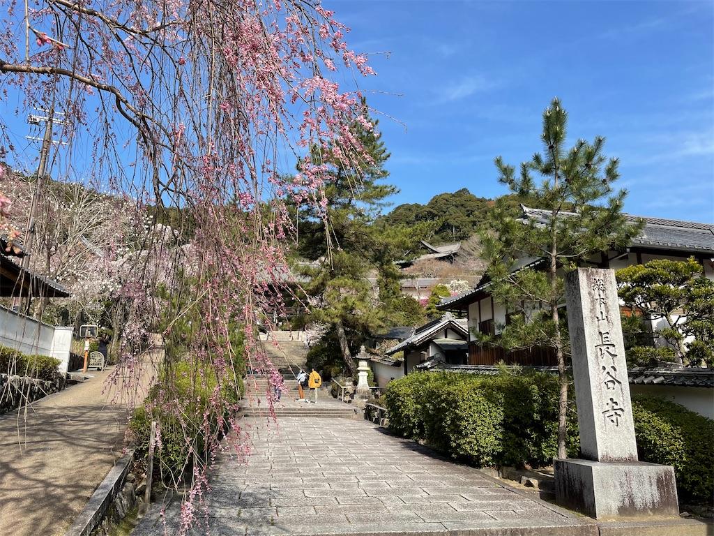 f:id:shokichi48:20210321094207j:image