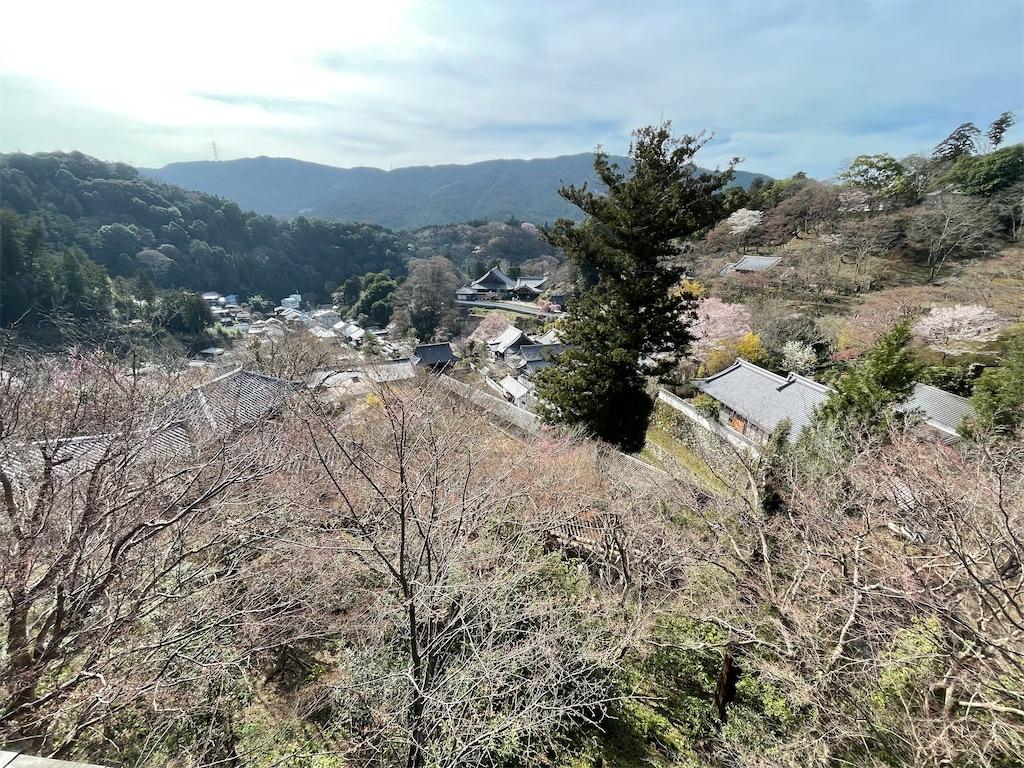 f:id:shokichi48:20210321094210j:image
