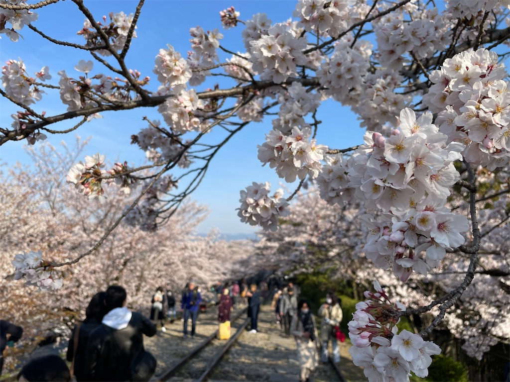 f:id:shokichi48:20210327095016j:image