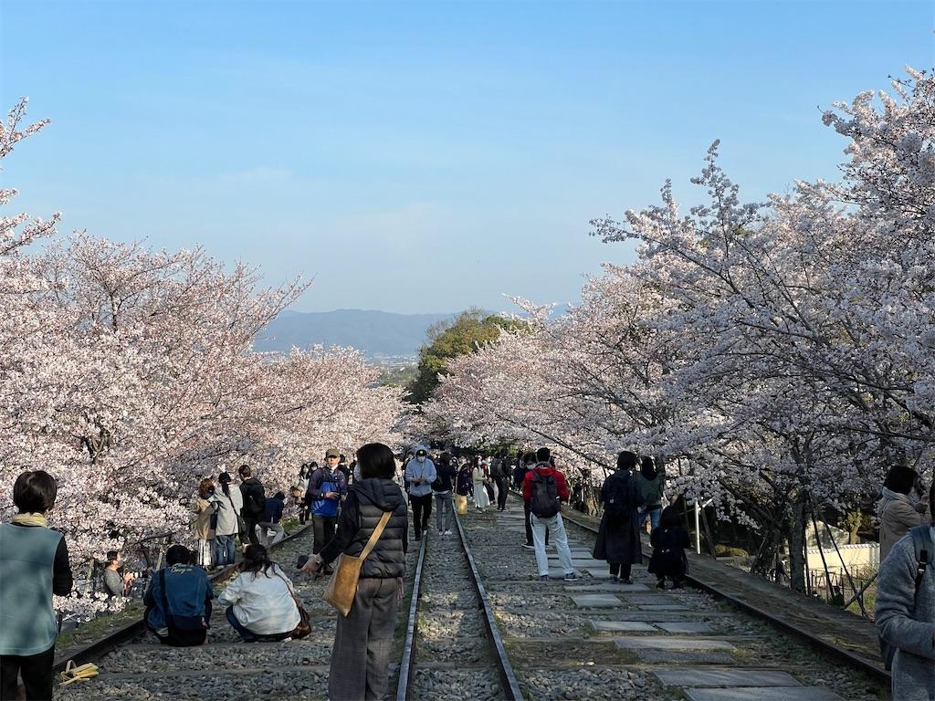 f:id:shokichi48:20210327095032j:image