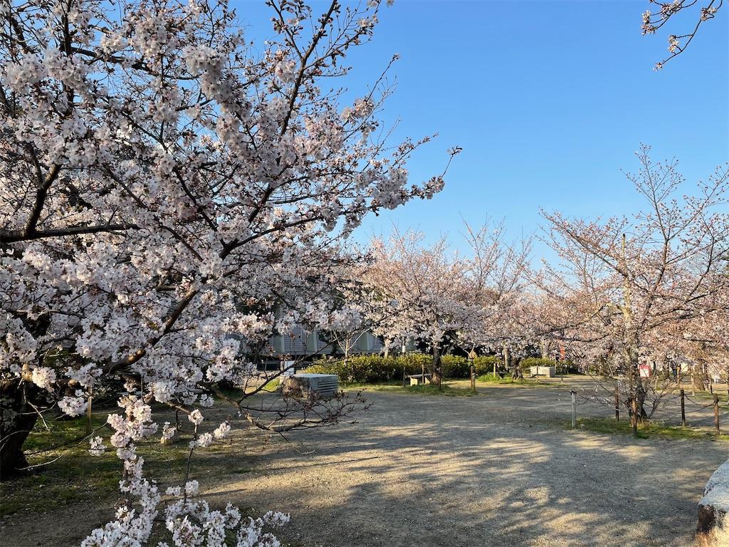 f:id:shokichi48:20210327095127j:image