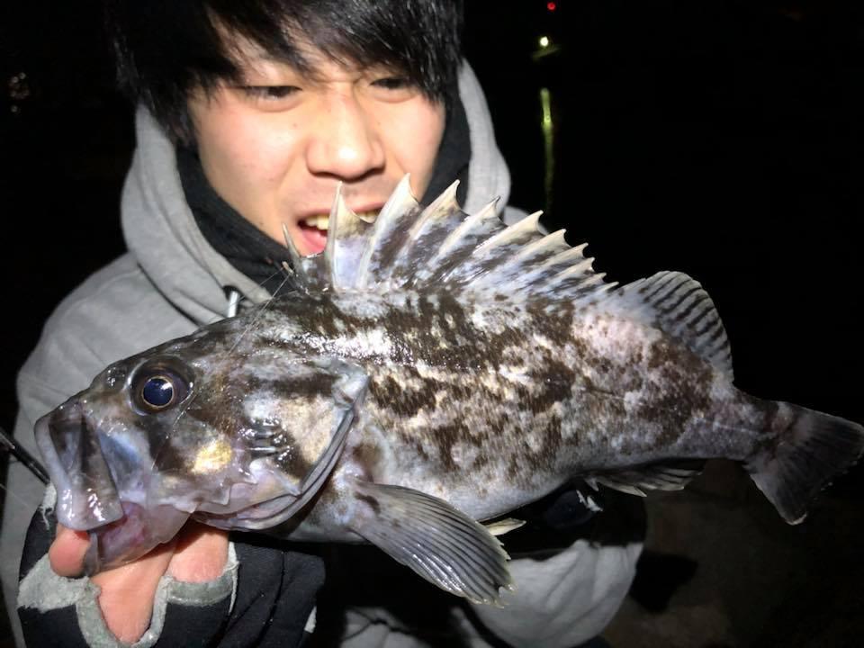 f:id:shokicimorikawa:20180206144322j:plain