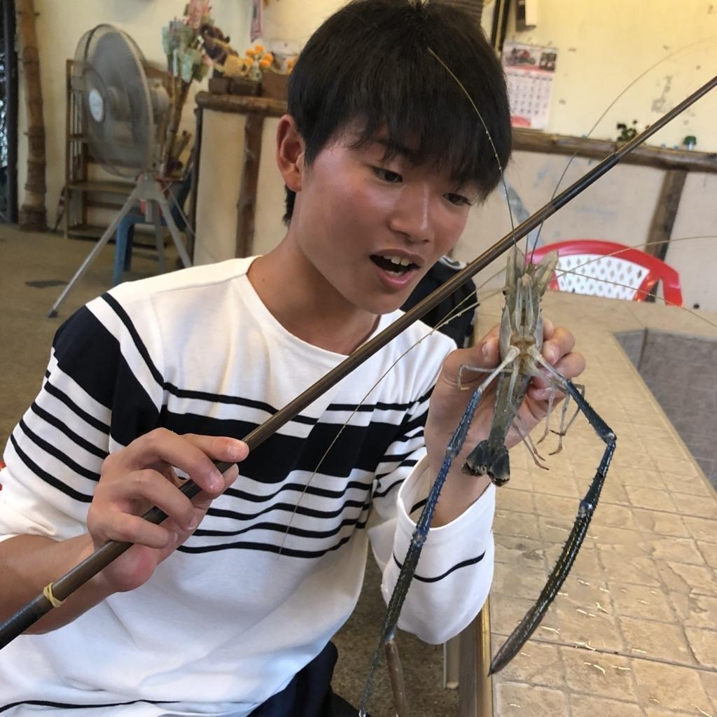 f:id:shokicimorikawa:20180429120356j:plain