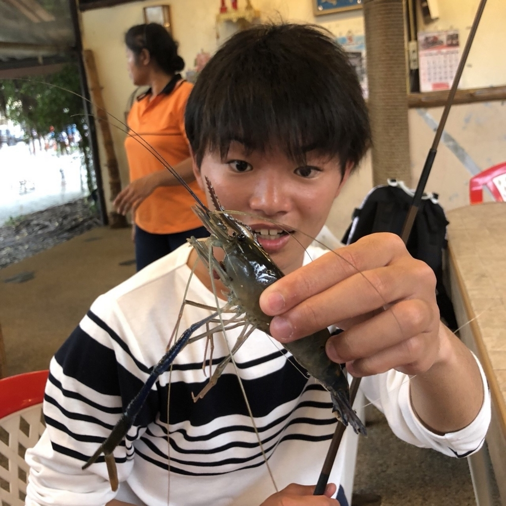 f:id:shokicimorikawa:20180429120417j:plain