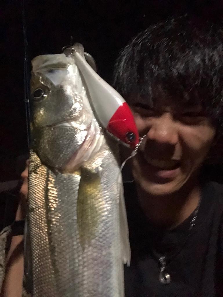 f:id:shokicimorikawa:20180918191918j:plain